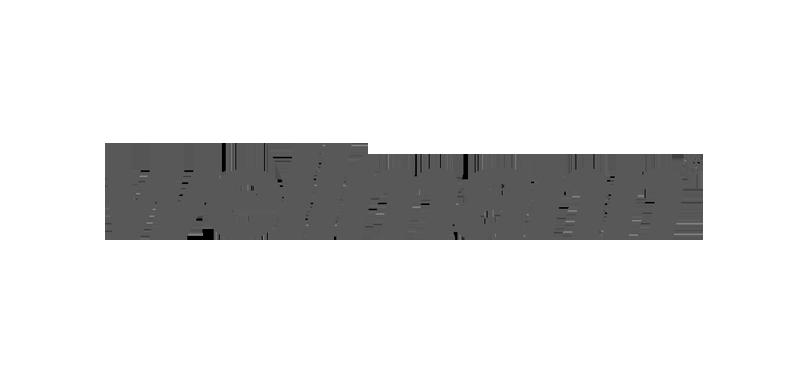 wellmann_logo